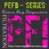 d PFI PEFB Series Polyester Filter Bag Indonesia  medium