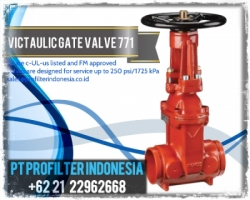d d d Victaulic Gate Valve 771 Profilter Indonesia  large